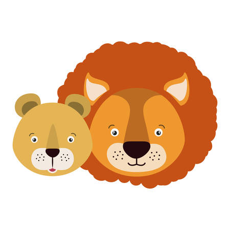 lioness: white background with colorful caricature face couple cute lion and lioness animals vector illustration