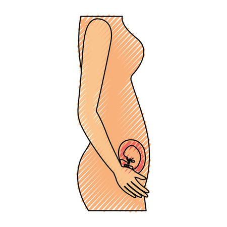 colored crayon silhouette of side view pregnancy process in female body embryo growth vector illustration