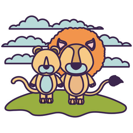 lioness: white background with color scene faceless couple cute lion and lioness animals in grass vector illustration