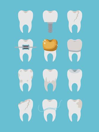 premolar: teeth different type set on color poster vector illustration