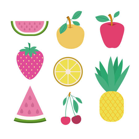 Fruits set collection on white background illustration
