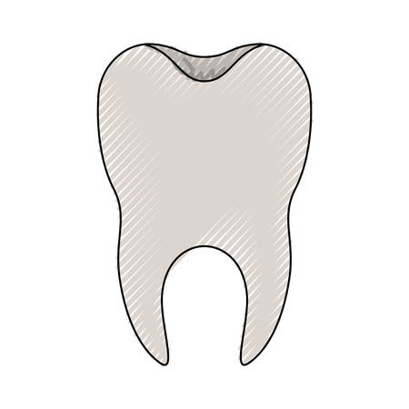 Healthy tooth illustration.