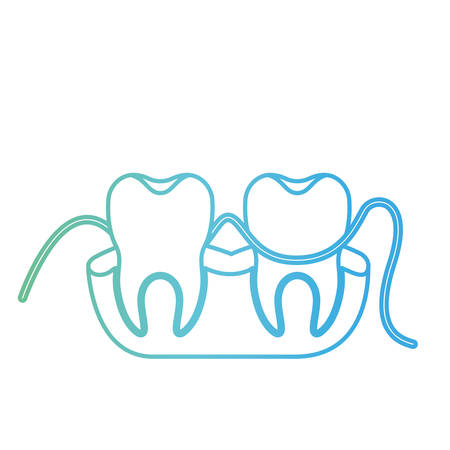 teeth and gums with dental floss between them in degraded green to blue color contour vector illustration