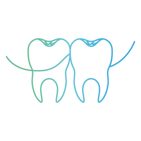 teeth with dental floss between them in degraded green to blue color contour vector illustration