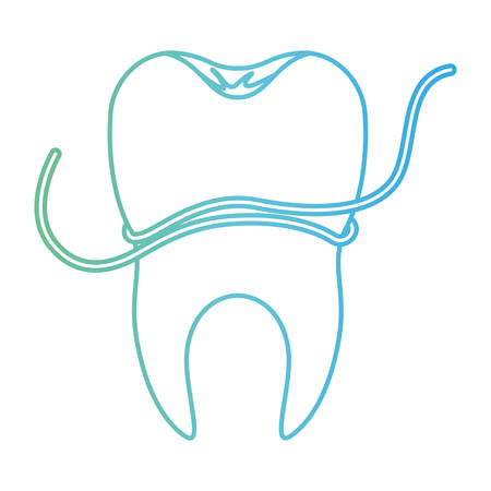tooth with root and dental floss around in degraded green to blue color contour vector illustration