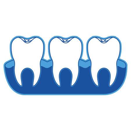 Teeth with tooth root view in blue silhouette vector illustration Illustration