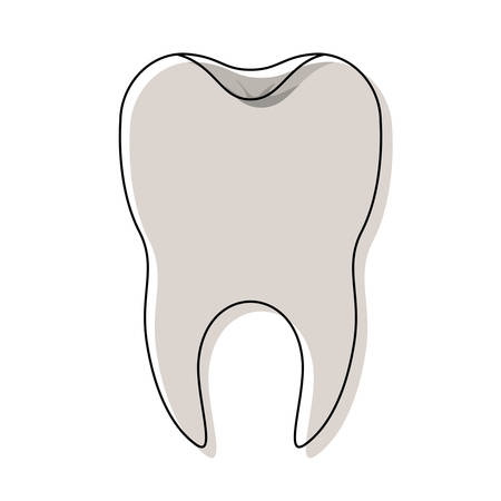 healthy tooth with root in watercolor silhouette vector illustration