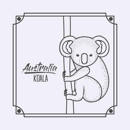 australia koala in frame and monochrome silhouette vector illustration