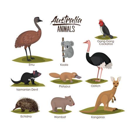 Animales de australia en la ilustración de vector de silueta colorida Vectores