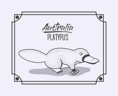 australia platypus frame in monochrome silhouette vector illustration 向量圖像