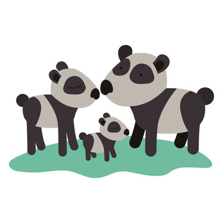 cartoon pandas couple with cub over grass in colorful silhouette on white background vector illustration