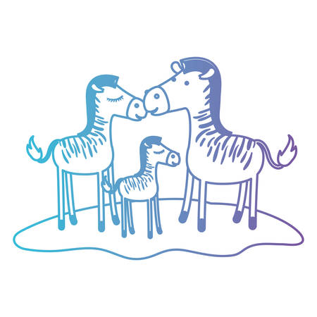 zebras couple and foal over grass in degraded blue to purple color contour vector illustration