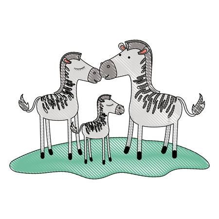 zebras couple and foal over grass in colored crayon silhouette vector illustration Illustration