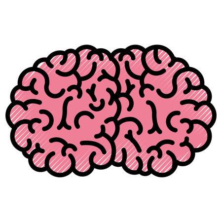 Brain science vector illustration