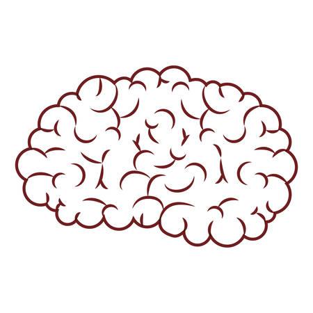 Brain  science mind intelligence mental design creative think vector illustration Illustration