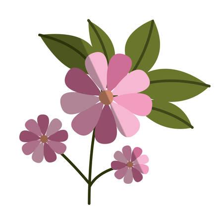 flower and leafs floral decoration vector illustration design