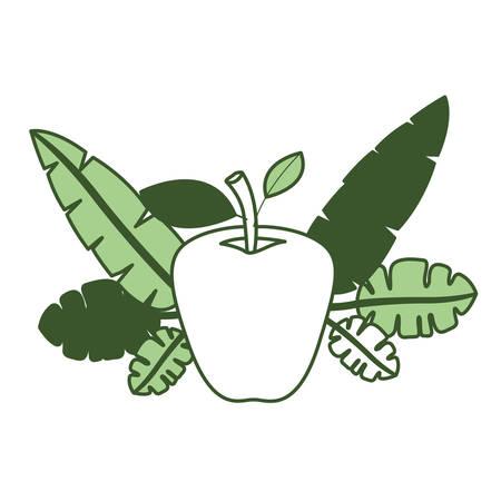 apple fresh fruit with leafs frame vector illustration design