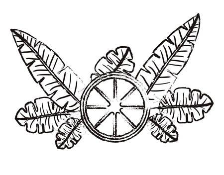 orange slice with leafs fresh and citrus fruit vector illustration design