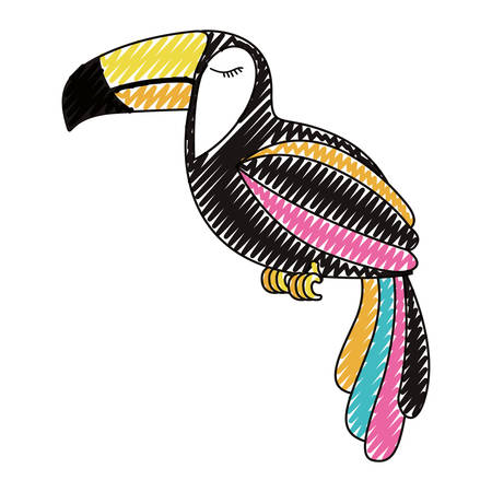 Toucan exotic bird icon vector illustration design. Illustration