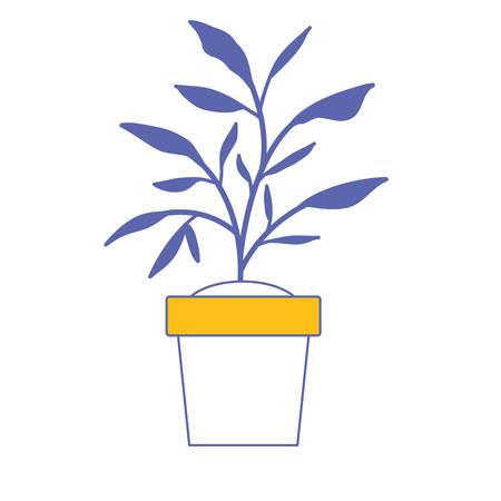 House plant in pot vector illustration design 일러스트
