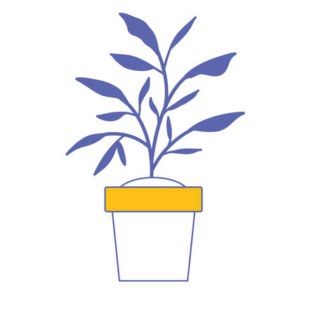 House plant in pot vector illustration design Иллюстрация