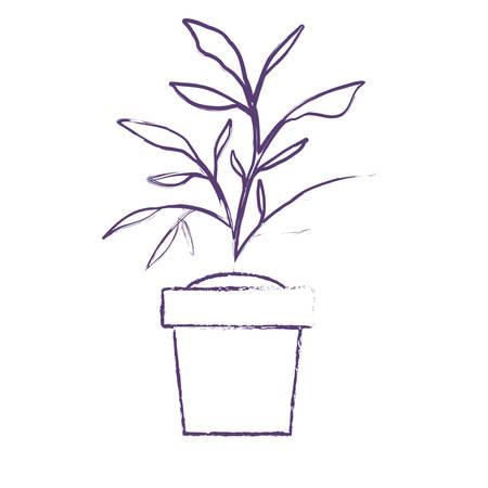 house plant in pot vector illustration design Vettoriali
