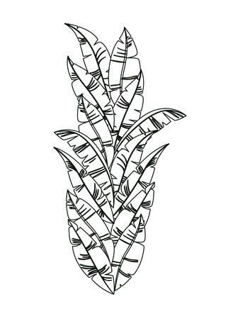 carnival feathers ornament decorative vector illustration design
