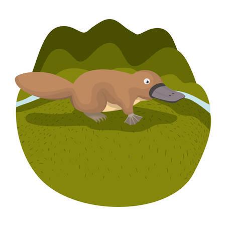 platypus in the camp wild animal australian vector illustration design