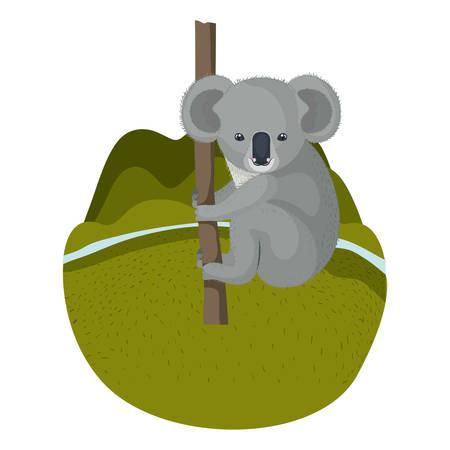 wild koala australian creature hanging in tree vector illustration design Illustration