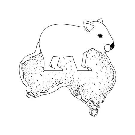 wild wombat creature over australian map vector illustration design