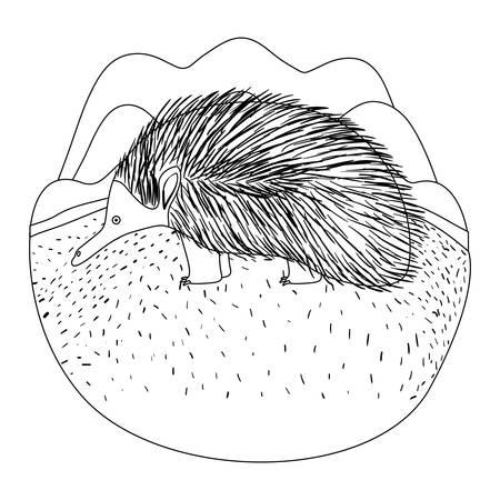 A wild Chicana Australian creature in the camp vector illustration design Illustration