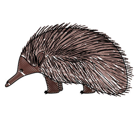 A wild Chicana Australian creature vector illustration design