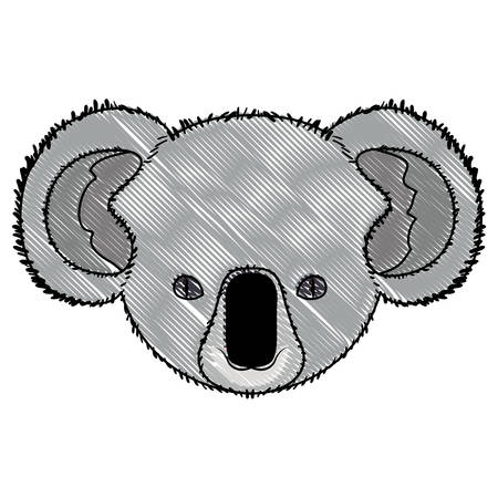 wild koala australian creature head vector illustration design