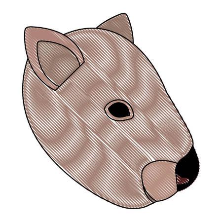 A wild wombat Australian creature head vector illustration design Illustration