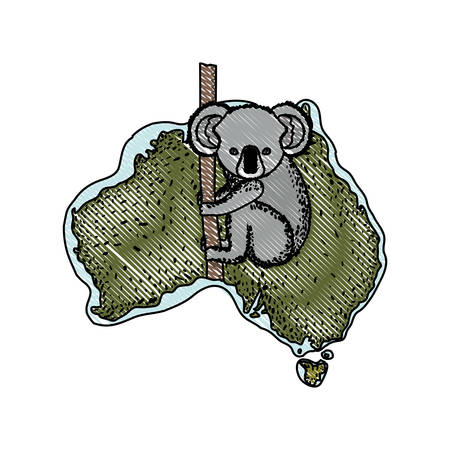A wild koala creature over Australian map vector illustration design Illustration
