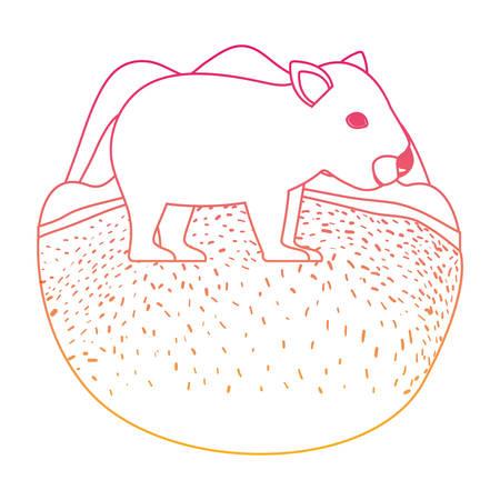 wild wombat australian creature in the camp vector illustration design Illustration