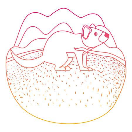 wild tasmanian devil creature in the camp vector illustration design