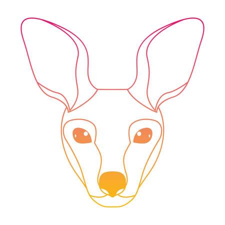 wild kangaroo head australian creature vector illustration design