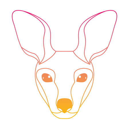 wild kangaroo head australian creature vector illustration design