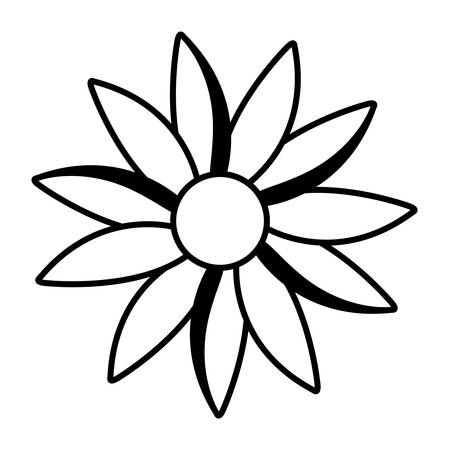 Cute daisy flower decorative icon vector illustration design