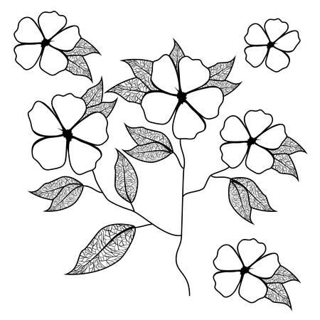 cute daisy flower with leafs decorative vector illustration design 일러스트