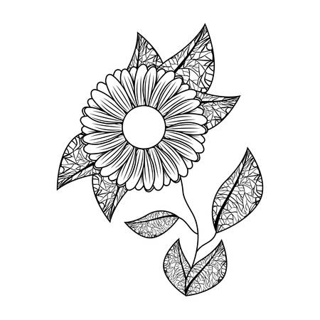 cute sunflower flower with leafs decorative vector illustration design