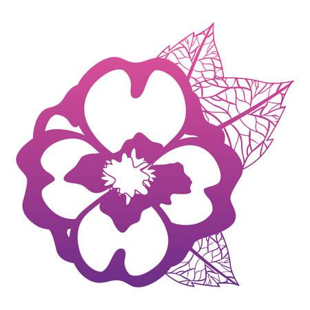Cute jasmine flower with leafs decorative vector illustration design.