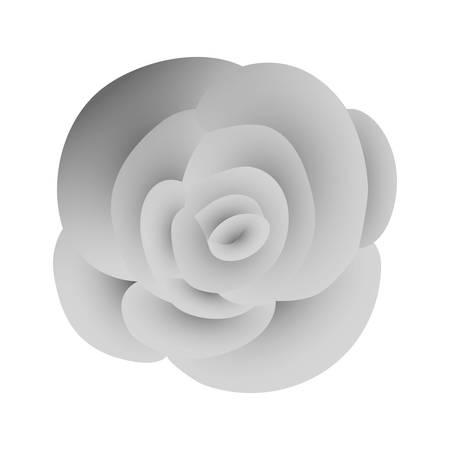 beautiful rose flower silvery decoration vector illustration design