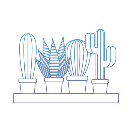 shelf with houseplants cactus decoration vector illustration design Ilustração