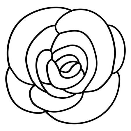 beautiful rose flower decorative vector illustration design