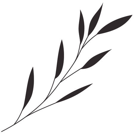 branch with leafs decorative icon vector illustration design