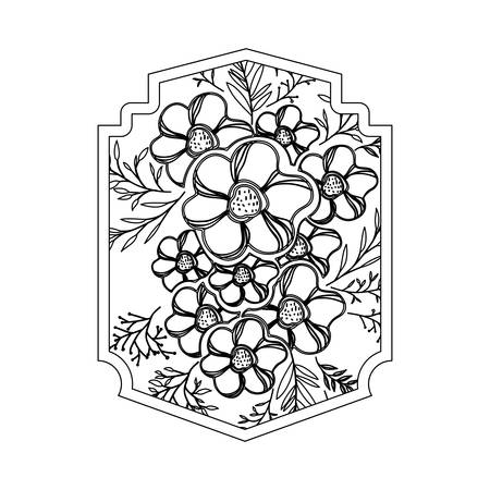 flower and leafs decorative frame vector illustration design