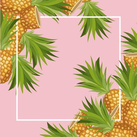 fresh pineapple fruit tropical frame vector illustration design Illustration