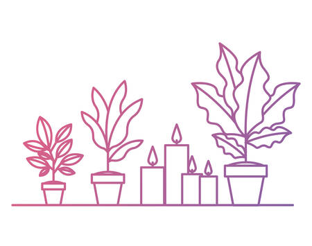 shelf with houseplants scene vector illustration design